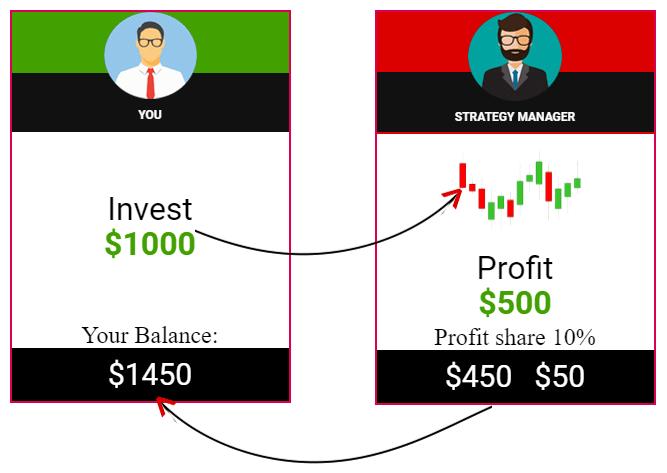 Copy Trading Program