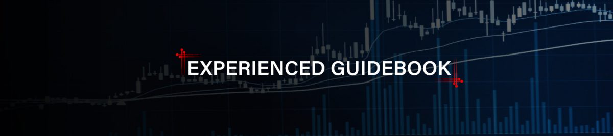 experienced-guidebook